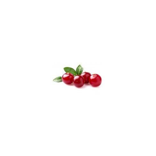Vörösáfonya magolaj (szűz)