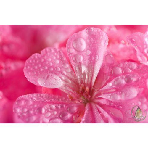 Bio geránium virágvíz