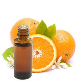 Narancs illóolaj - édesnarancs