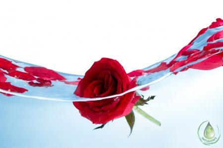 Bio rózsa virágvíz