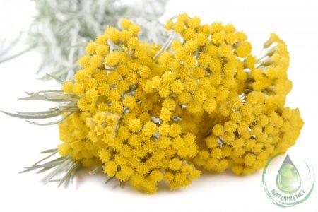 Bio immortelle - olasz szalmagyopár virágvíz
