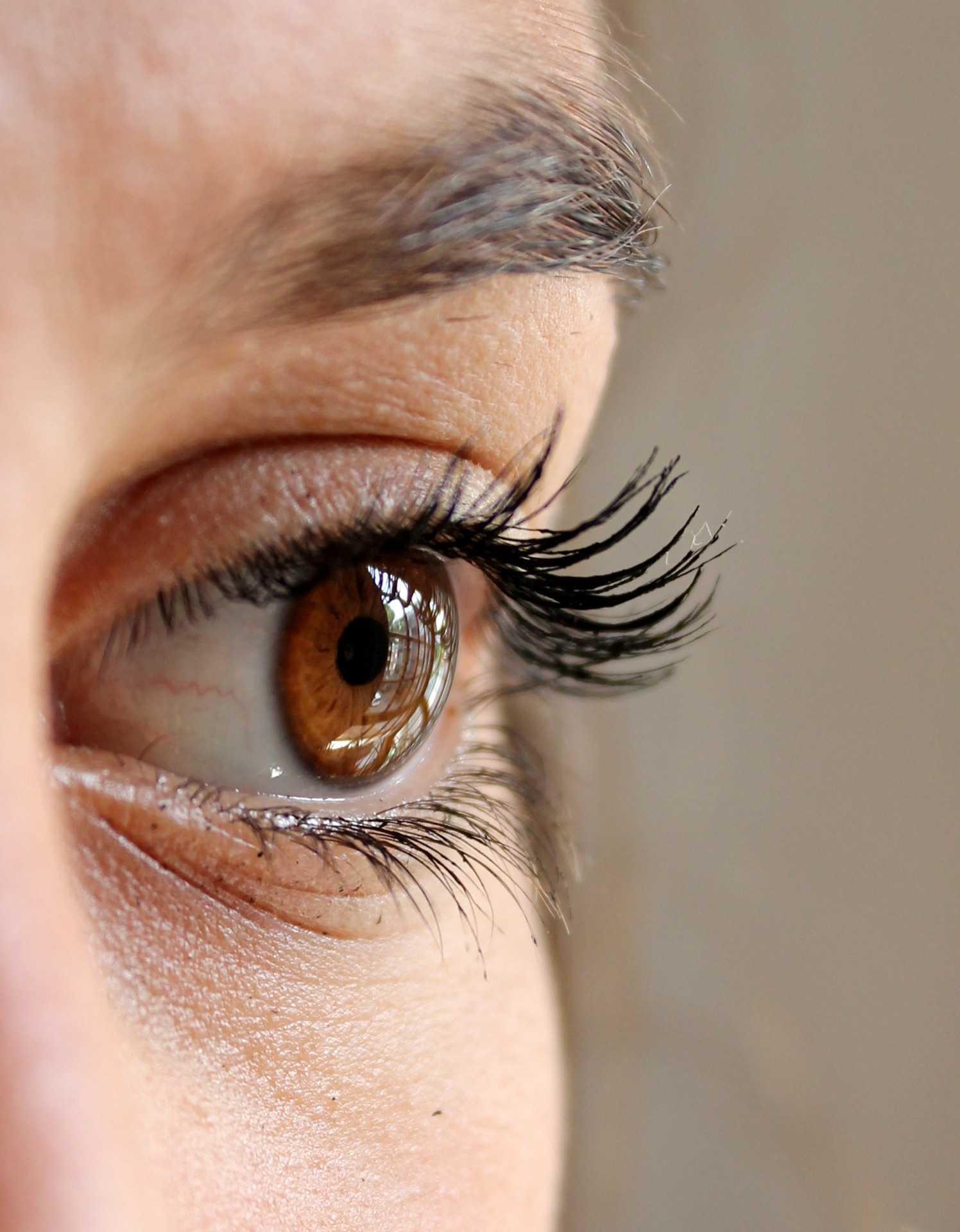 ricinusolaj-szempillara